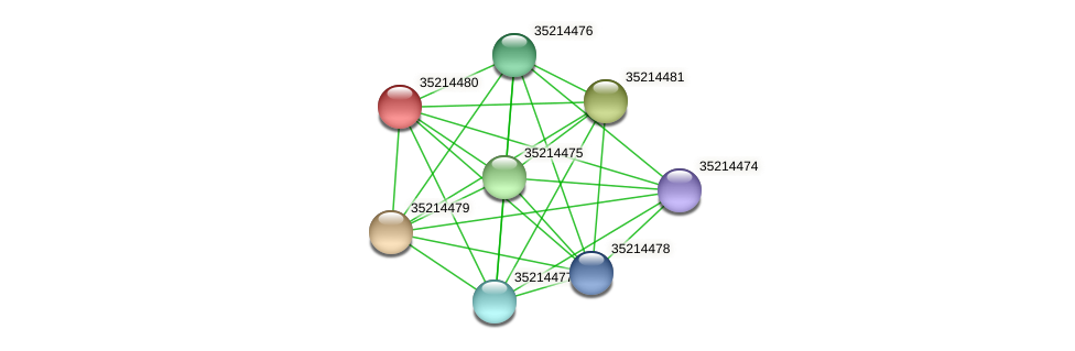 glr3907 protein (Gloeobacter violaceus) - STRING interaction network