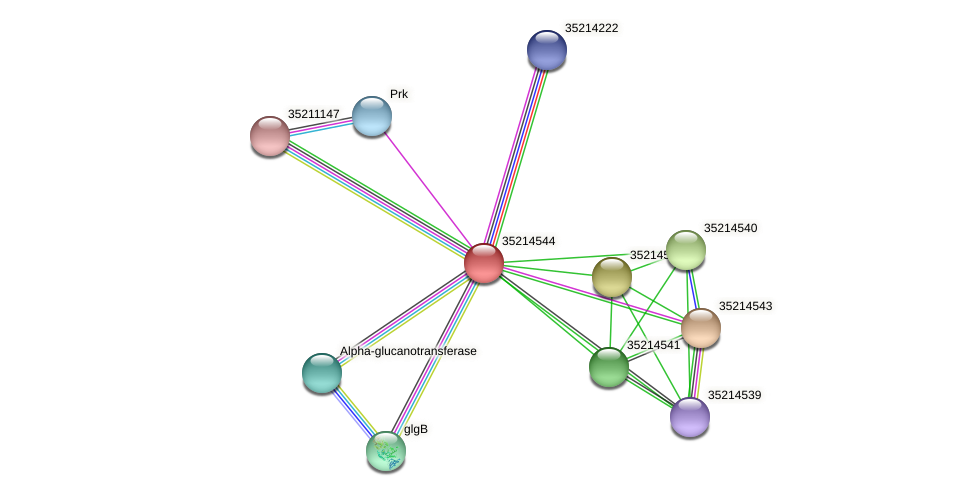 glr3971 protein (Gloeobacter violaceus) - STRING interaction network