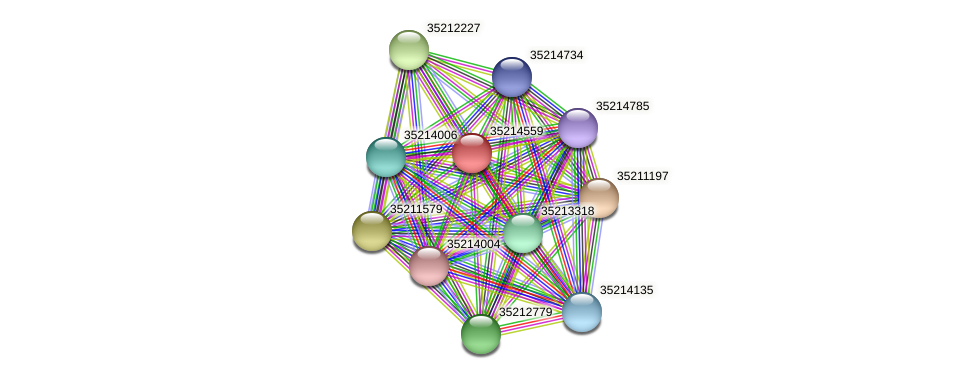 glr3986 protein (Gloeobacter violaceus) - STRING interaction network