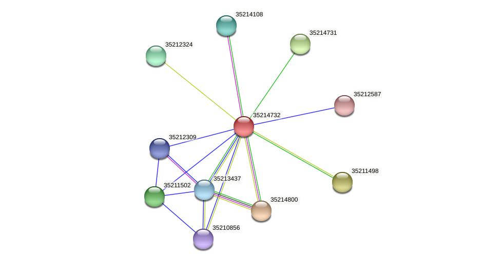 glr4158 protein (Gloeobacter violaceus) - STRING interaction network