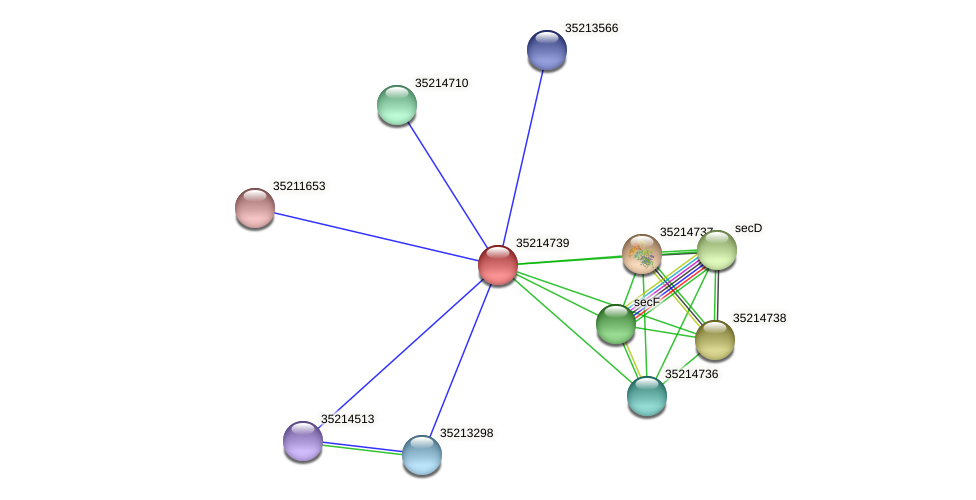 glr4165 protein (Gloeobacter violaceus) - STRING interaction network
