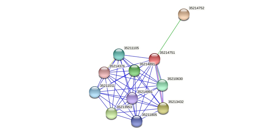 glr4177 protein (Gloeobacter violaceus) - STRING interaction network
