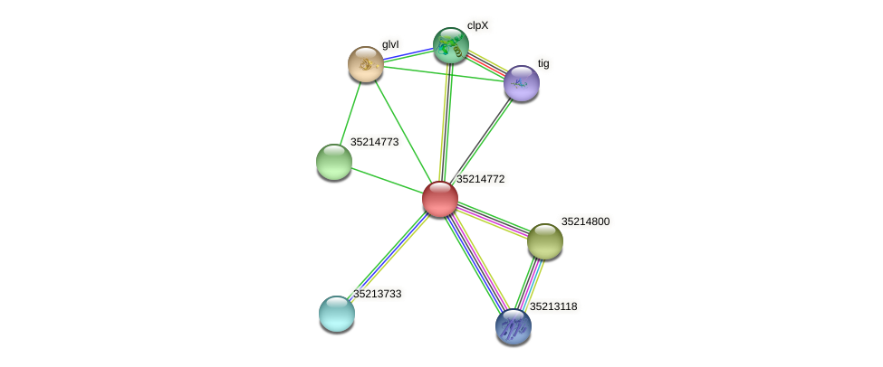 glr4198 protein (Gloeobacter violaceus) - STRING interaction network