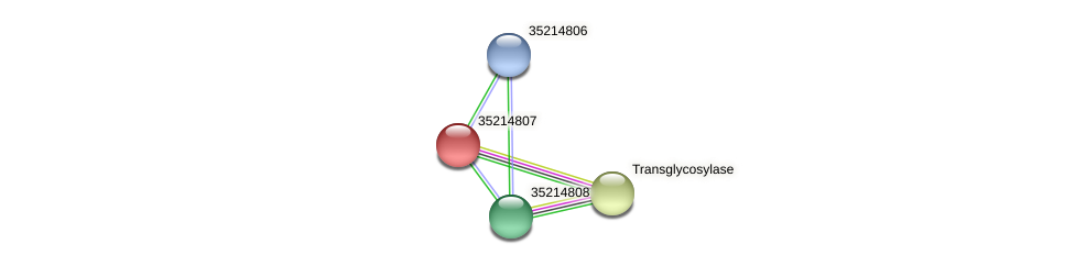 glr4233 protein (Gloeobacter violaceus) - STRING interaction network