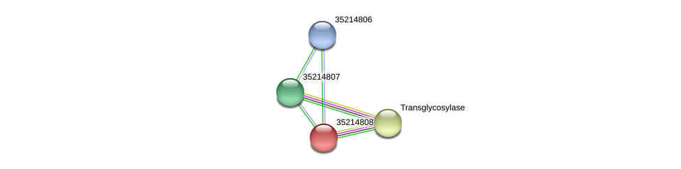 glr4234 protein (Gloeobacter violaceus) - STRING interaction network