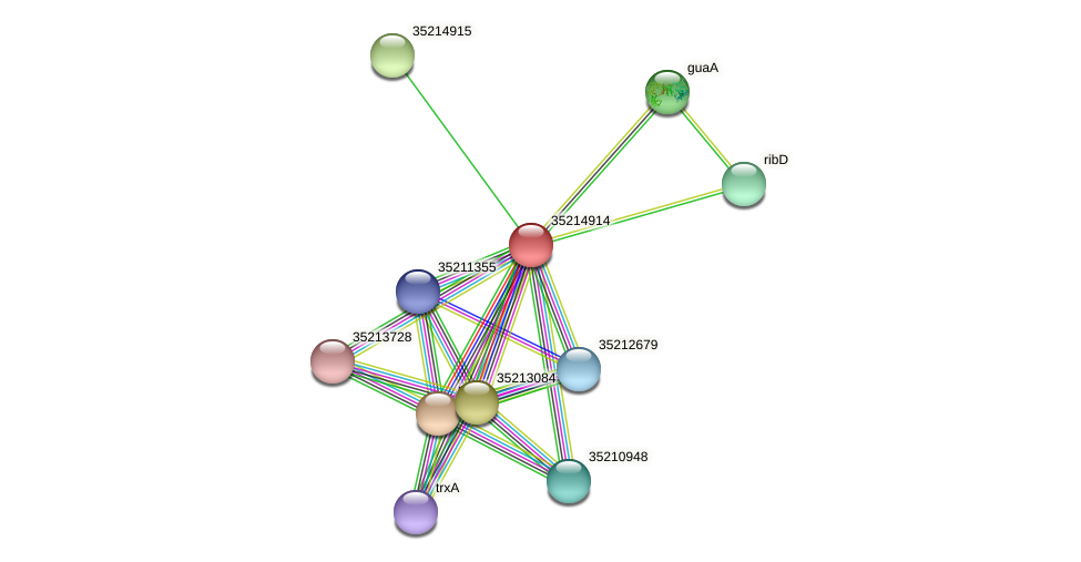 glr4339 protein (Gloeobacter violaceus) - STRING interaction network