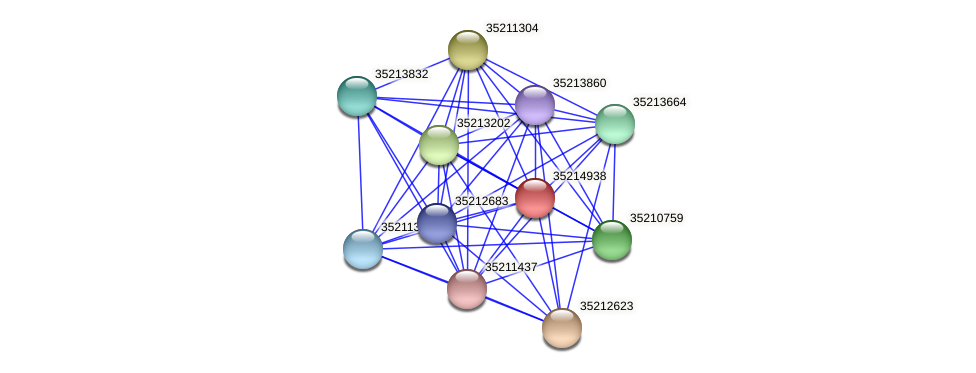 glr4363 protein (Gloeobacter violaceus) - STRING interaction network