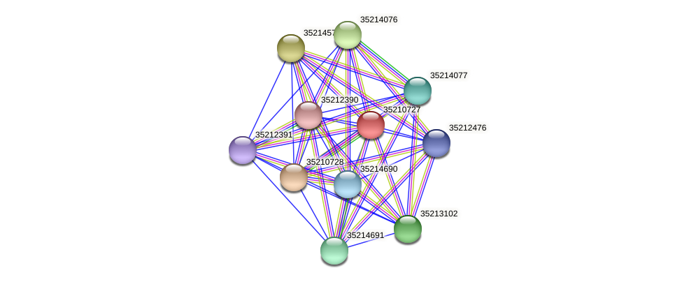 gsl0167 protein (Gloeobacter violaceus) - STRING interaction network
