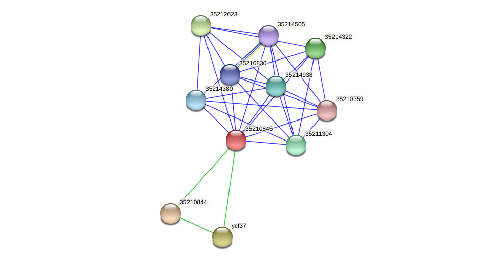 gsl0285 protein (Gloeobacter violaceus) - STRING interaction network