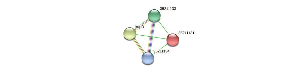 gsl0569 protein (Gloeobacter violaceus) - STRING interaction network