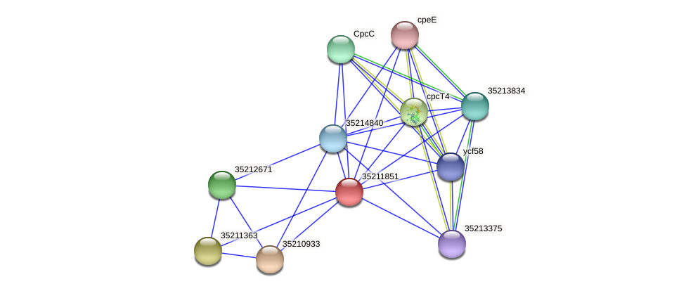 gsl1287 protein (Gloeobacter violaceus) - STRING interaction network