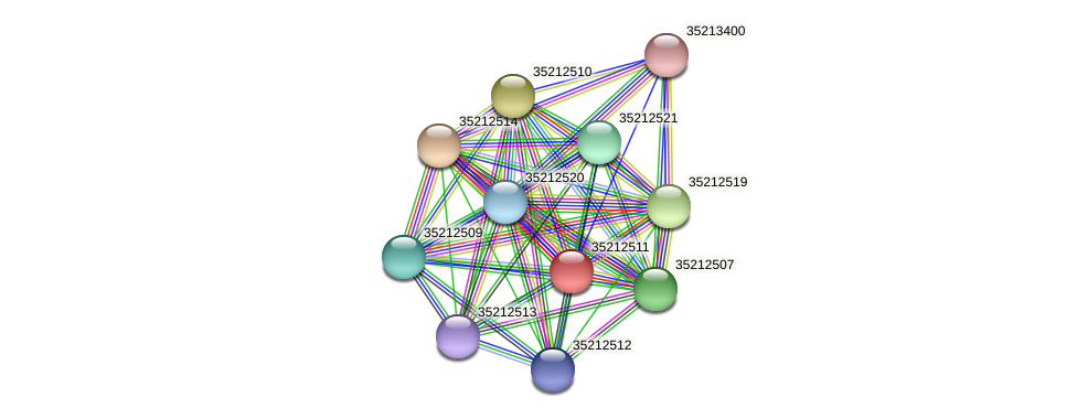 gsl1945 protein (Gloeobacter violaceus) - STRING interaction network