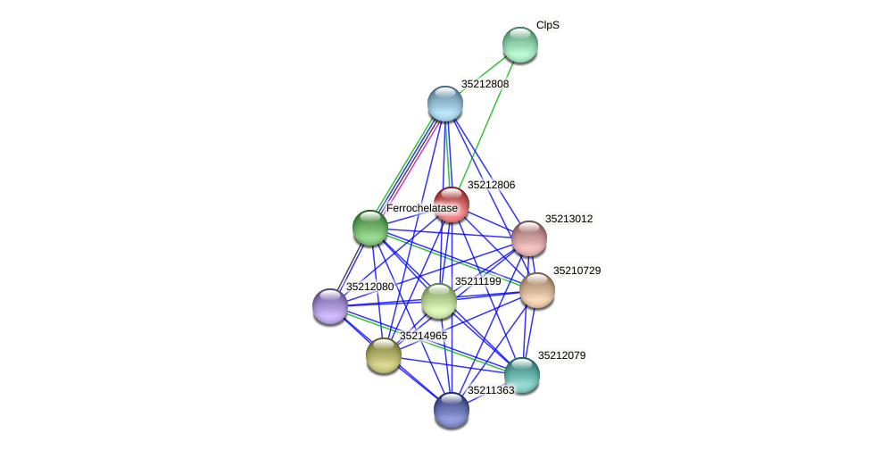 gsl2239 protein (Gloeobacter violaceus) - STRING interaction network