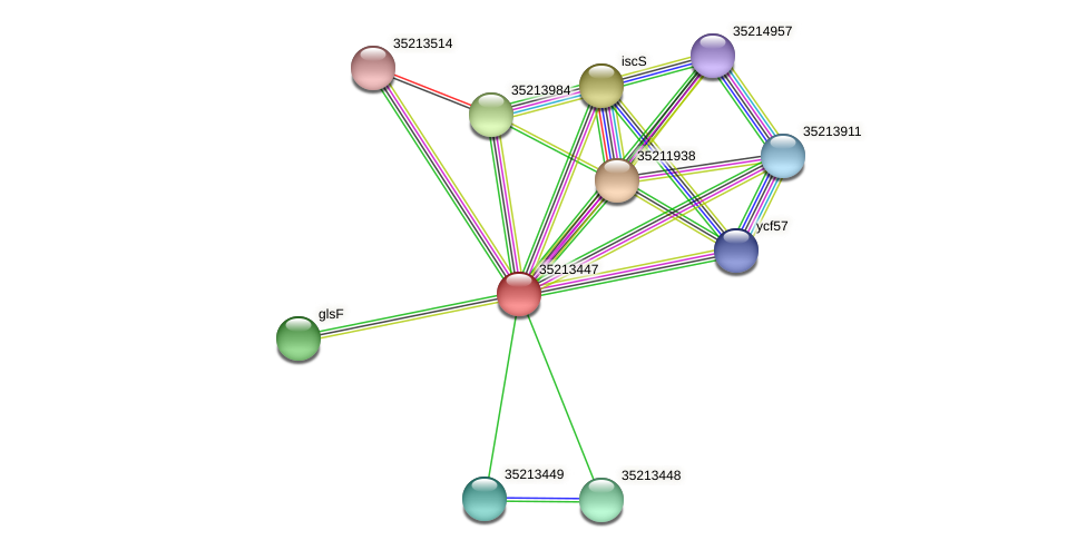 gsl2877 protein (Gloeobacter violaceus) - STRING interaction network