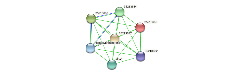 gsl3115 protein (Gloeobacter violaceus) - STRING interaction network