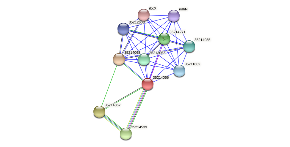 gsl3494 protein (Gloeobacter violaceus) - STRING interaction network
