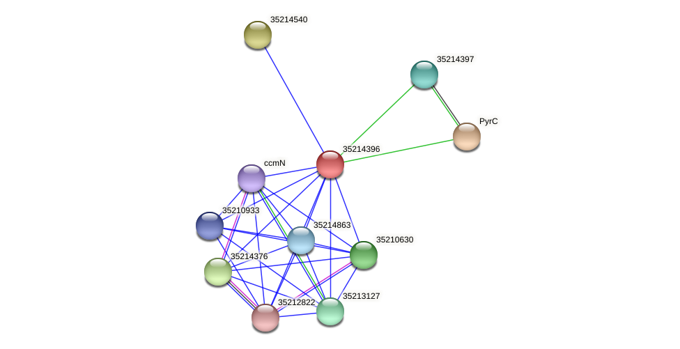 gsl3823 protein (Gloeobacter violaceus) - STRING interaction network