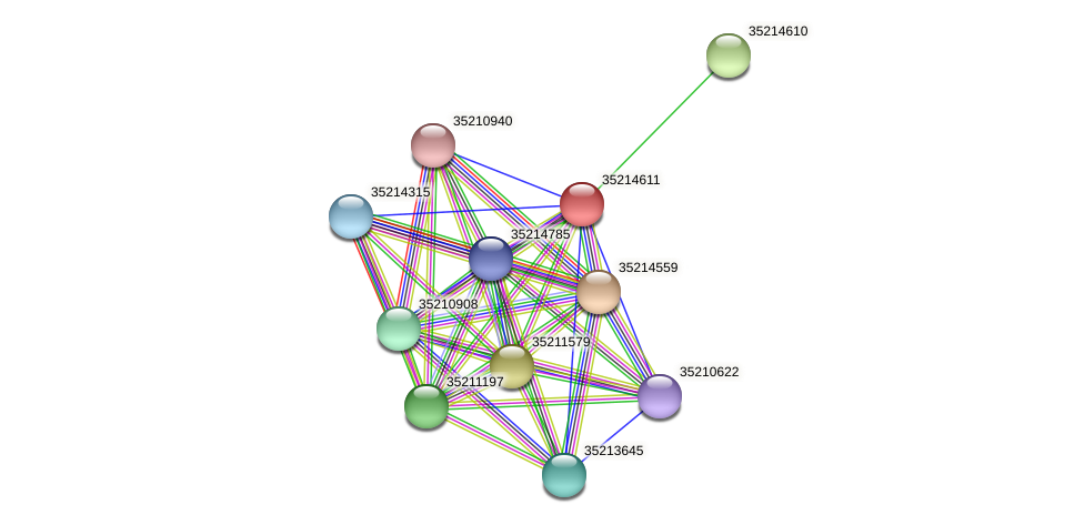 gsl4037 protein (Gloeobacter violaceus) - STRING interaction network