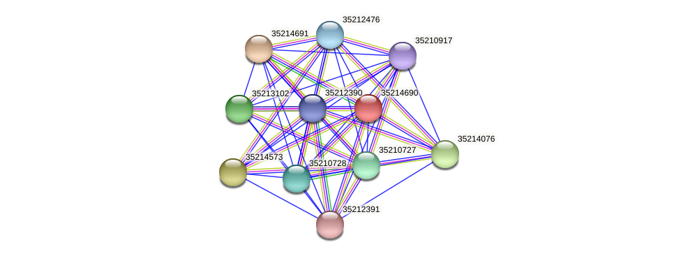 gsl4116 protein (Gloeobacter violaceus) - STRING interaction network