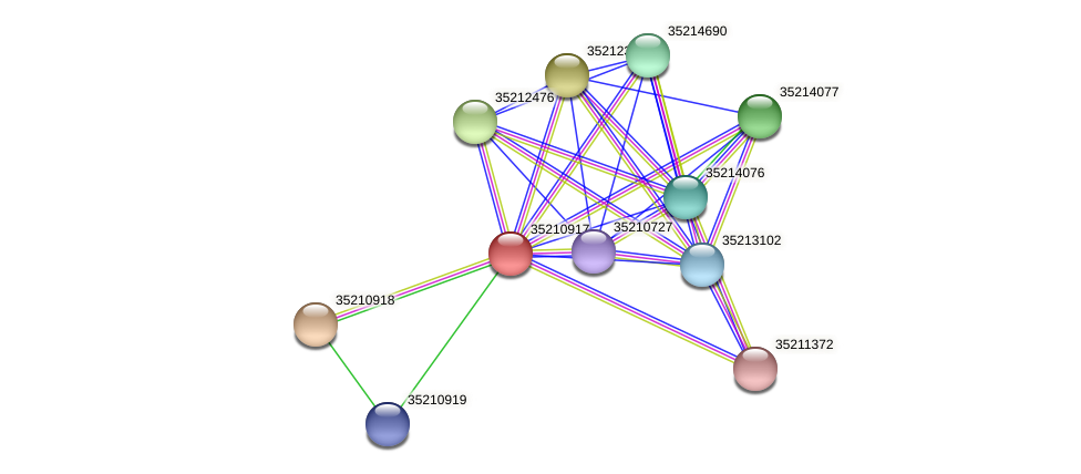 gsr0356 protein (Gloeobacter violaceus) - STRING interaction network