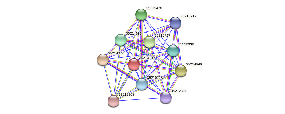 gsr2534 protein (Gloeobacter violaceus) - STRING interaction network