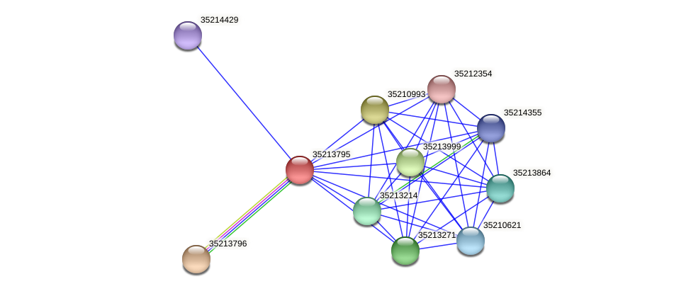 gsr3224 protein (Gloeobacter violaceus) - STRING interaction network