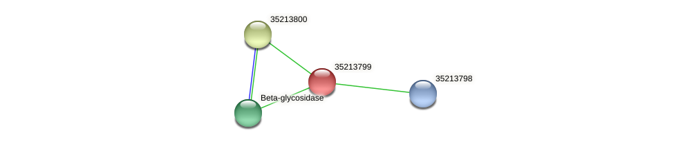 gsr3228 protein (Gloeobacter violaceus) - STRING interaction network