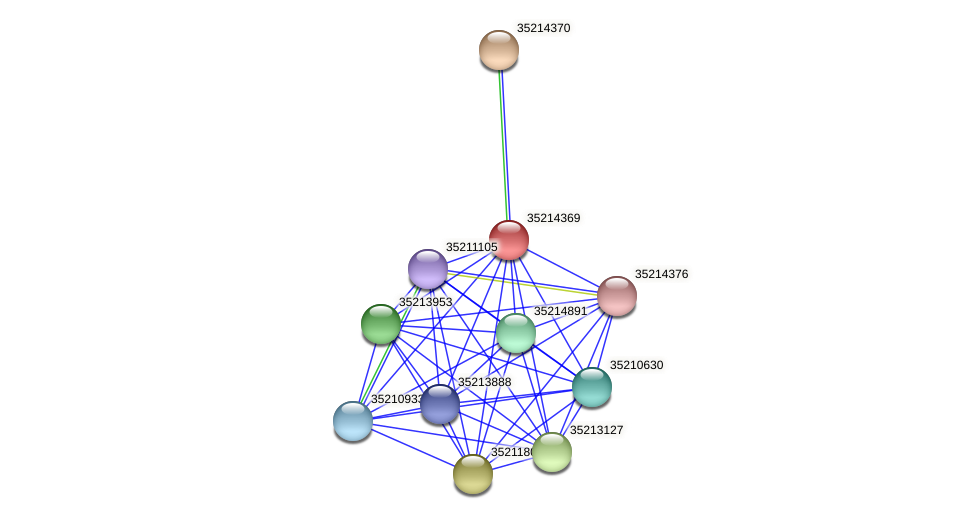 gsr3796 protein (Gloeobacter violaceus) - STRING interaction network