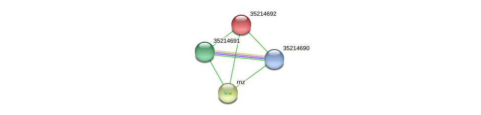 gsr4118 protein (Gloeobacter violaceus) - STRING interaction network