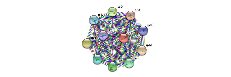 rplF protein (Methylobacillus flagellatus) - STRING interaction network