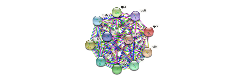 ctc protein (Methylobacillus flagellatus) - STRING interaction network