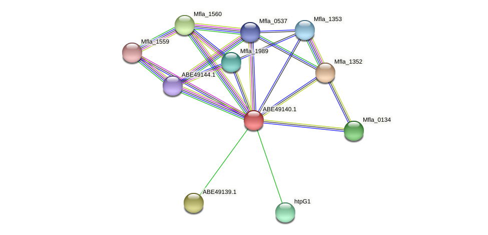 Mfla_0872 protein (Methylobacillus flagellatus) - STRING interaction network