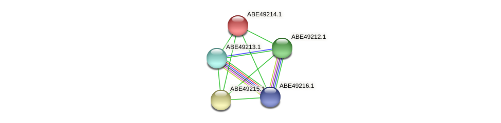 Mfla_0946 protein (Methylobacillus flagellatus) - STRING interaction network