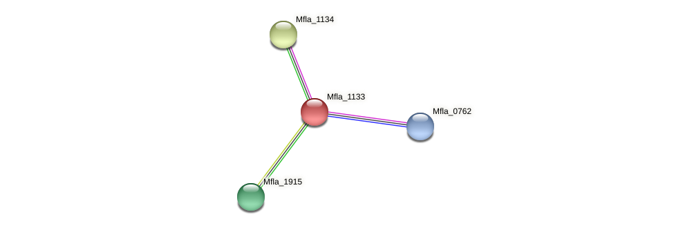 Mfla_1133 protein (Methylobacillus flagellatus) - STRING interaction network