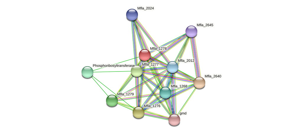 Mfla_1278 protein (Methylobacillus flagellatus) - STRING interaction network
