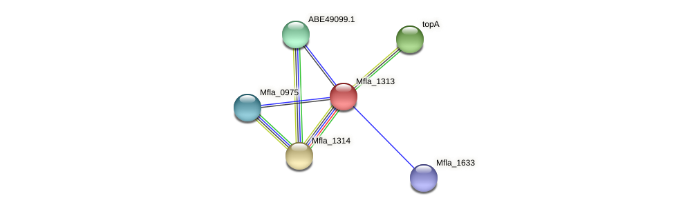 Mfla_1313 protein (Methylobacillus flagellatus) - STRING interaction network