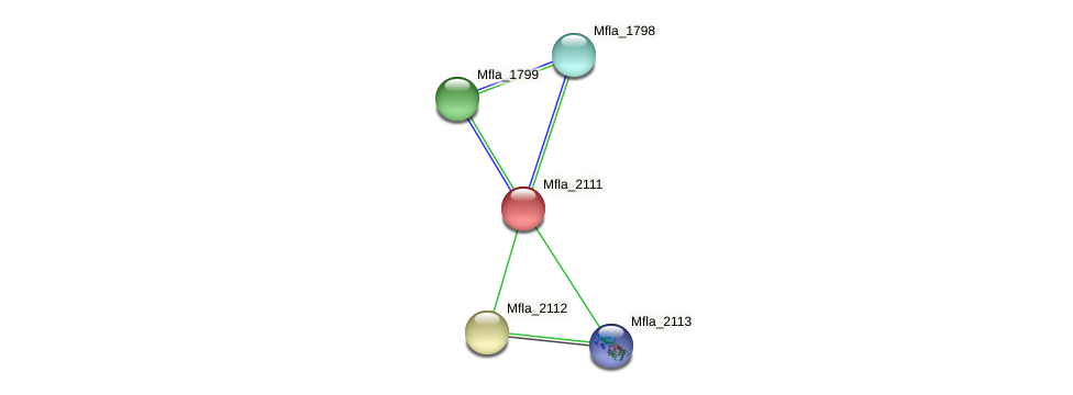 Mfla_2111 protein (Methylobacillus flagellatus) - STRING interaction network