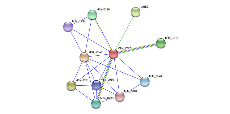 Mfla_2292 protein (Methylobacillus flagellatus) - STRING interaction network