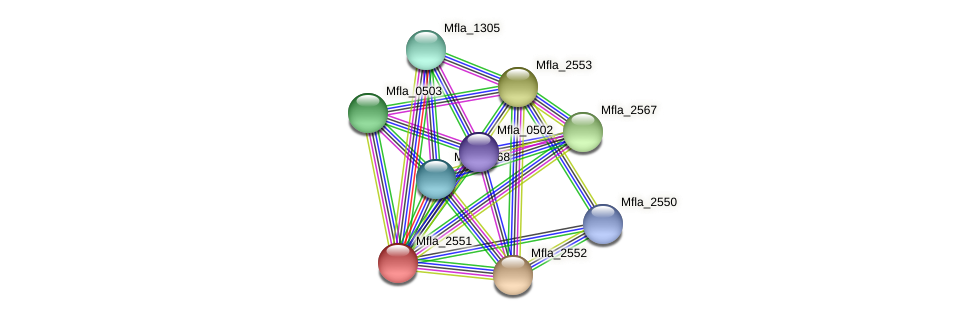 Mfla_2551 protein (Methylobacillus flagellatus) - STRING interaction network