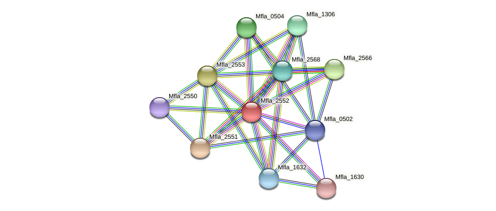 Mfla_2552 protein (Methylobacillus flagellatus) - STRING interaction network