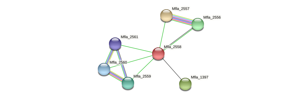Mfla_2558 protein (Methylobacillus flagellatus) - STRING interaction network