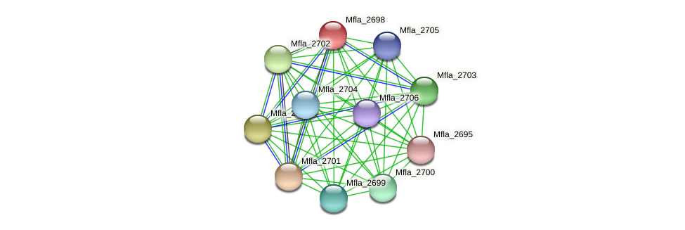 Mfla_2698 protein (Methylobacillus flagellatus) - STRING interaction network