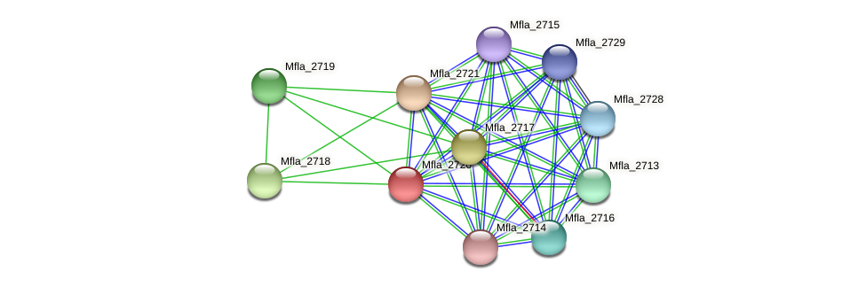 Mfla_2720 protein (Methylobacillus flagellatus) - STRING interaction network