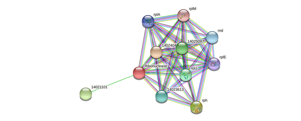 mll0040 protein (Mesorhizobium loti) - STRING interaction network
