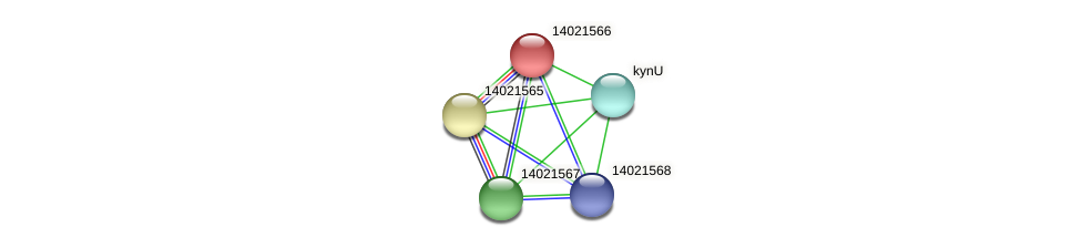 mll0623 protein (Mesorhizobium loti) - STRING interaction network