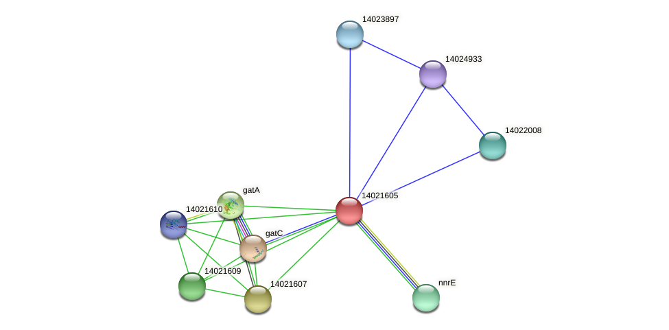 mll0674 protein (Mesorhizobium loti) - STRING interaction network
