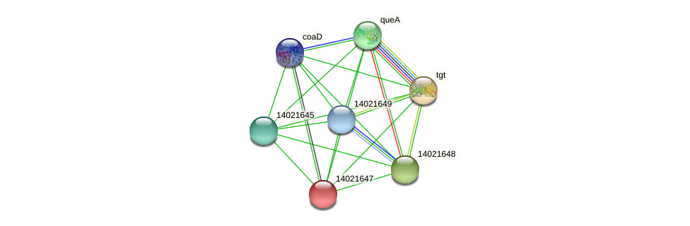 mll0725 protein (Mesorhizobium loti) - STRING interaction network