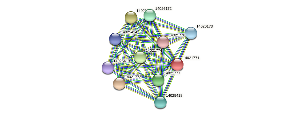 mll0893 protein (Mesorhizobium loti) - STRING interaction network