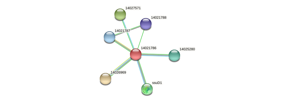mll0910 protein (Mesorhizobium loti) - STRING interaction network