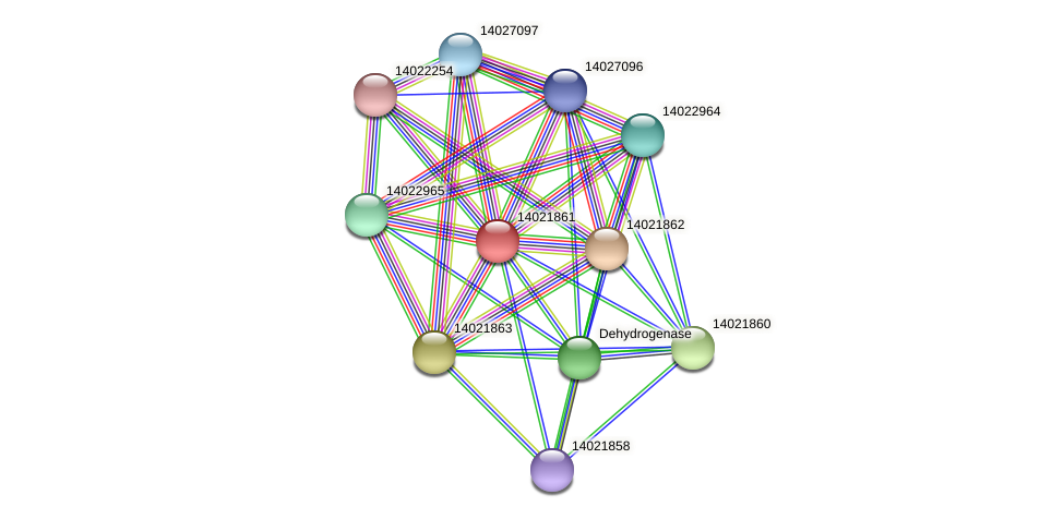 mll1002 protein (Mesorhizobium loti) - STRING interaction network